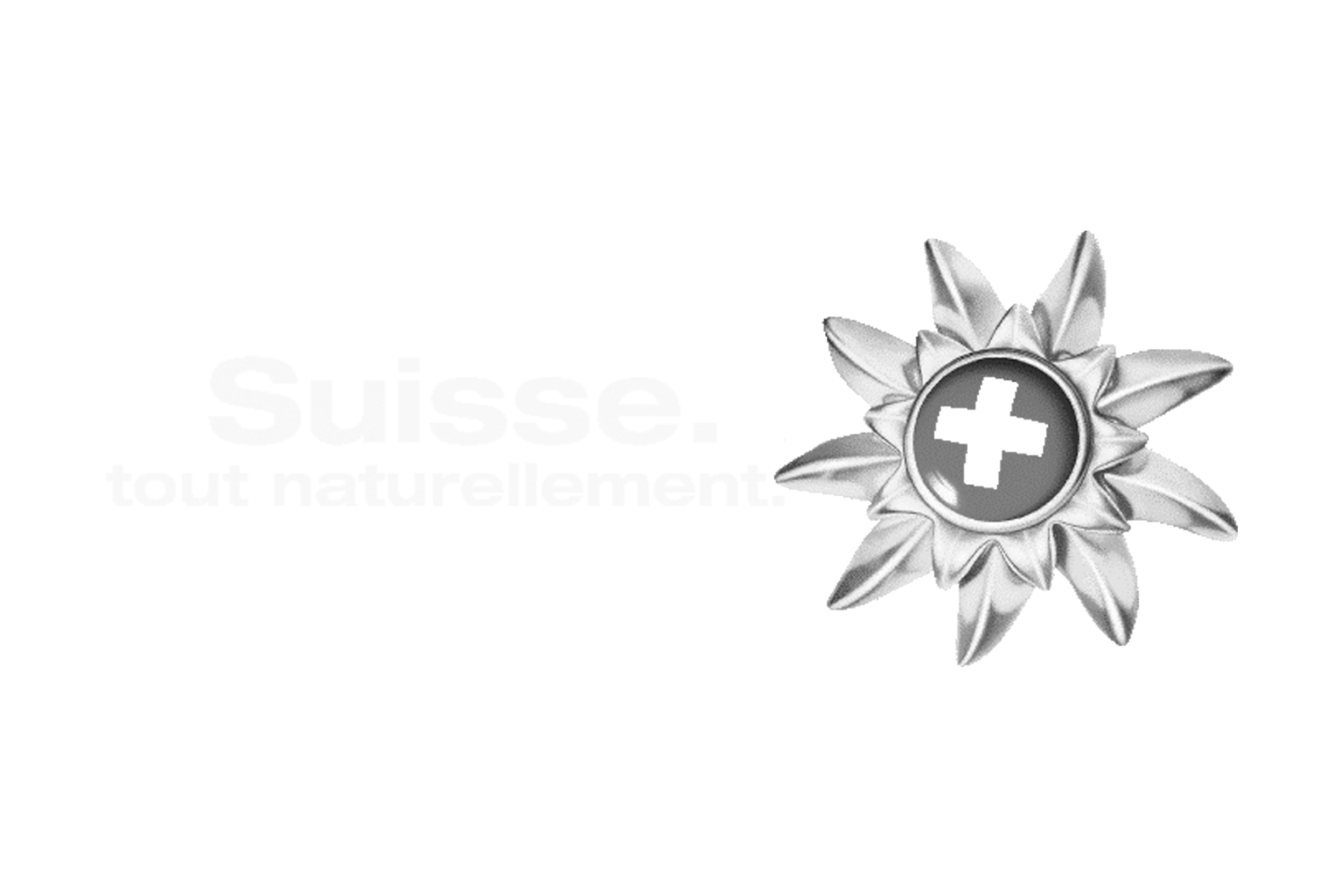 SUISSE TOURISME PARIS