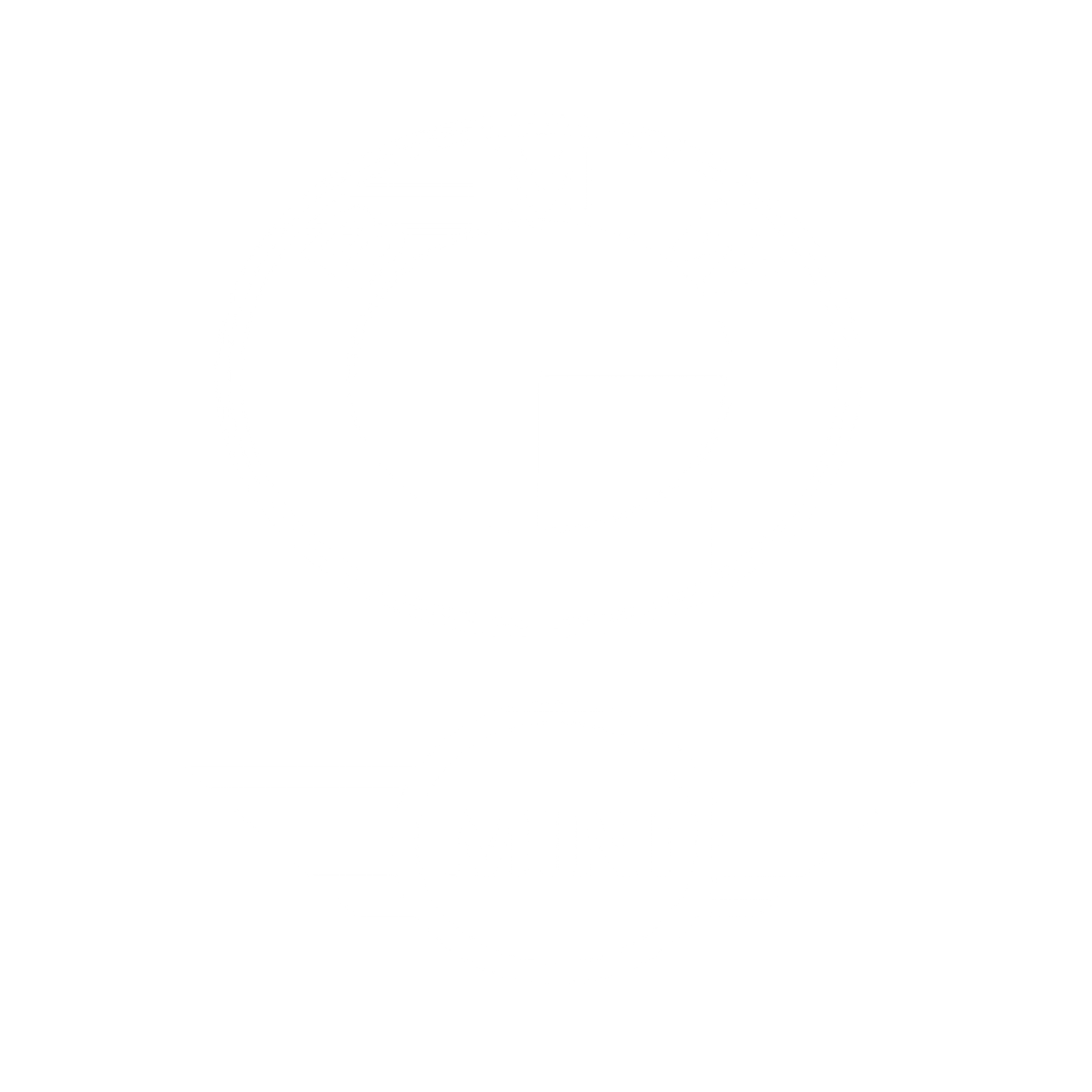 BMW MNI
